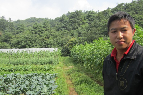 Why Chinese farmers have no clear path to organic farming